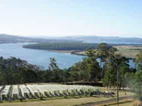 Scenic winery on the banks of the Tamar River