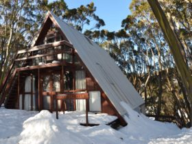 ANARE A frame lodge set in t5he snow amongst snow gum trees. Ski to ski run and XC trails.
