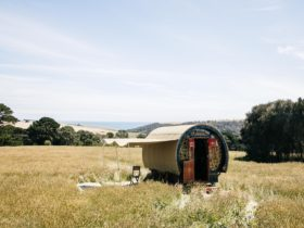 Camping in the paddocks