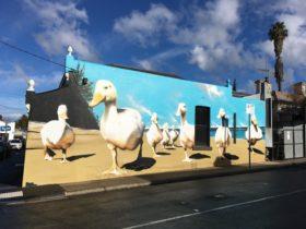 Ducks Mural 112 McConnell St