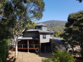 With views of Mt Buller summer or winter. The perfect holiday for the whole family.