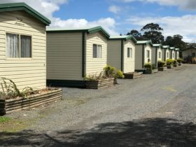 Prom Central Cabins