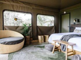 Premium glamping tent