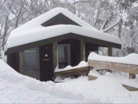 Wombat Cabin in Winter