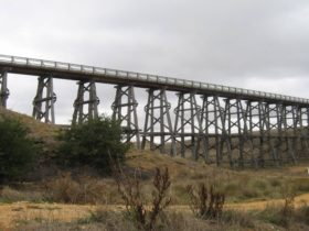 Trestle bridge raised above green bushland on a grey cloudy day