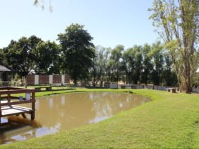 Photo of pond 3: Barramundi in Summer, Trout and Salmon in Winter