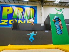 Gravity Wall in Pro Zone