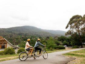 2 people on a tandem bike on the Warburton Rail Trail