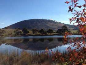 Mount Buninyong on a clear day with water in foreground