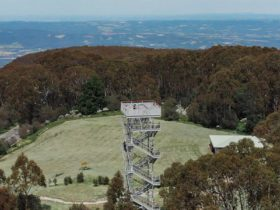 Mt Donna Buang Lookout Tower