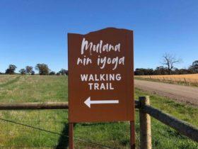 Mulana nin iyoga walking trail sign at trail head
