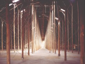 Interior of the Stick Shed