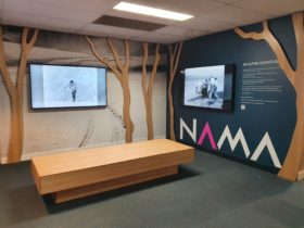 Museum Gallery with two screens and bench seat