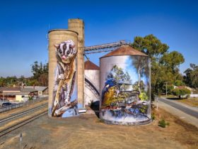 Rochester Silo Art is located on Northern Hwy in the middle of town