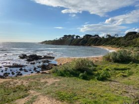 Looking towards Schnapper Point at Royal Beach, Mornington