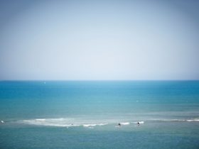 Shoreham Beach Surf