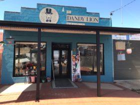 The Dandy Lion Studio Shop front