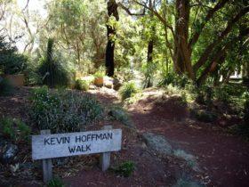 The Kevin Hoffman Walk