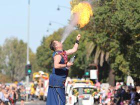 Roy Maloy at Tarra Festival Street Parade