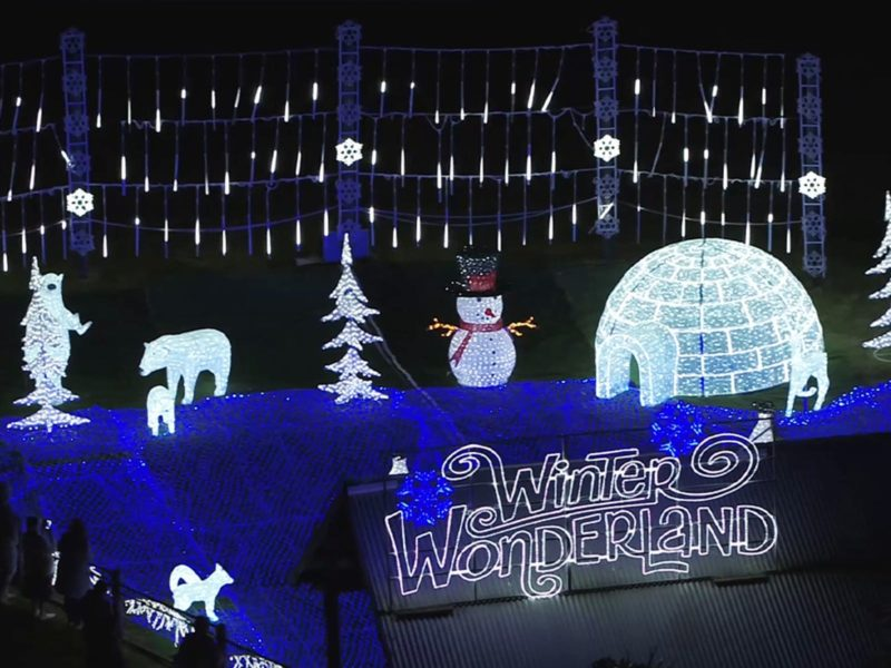 a scene of igloos, deer, snowmen and penguins made from lights