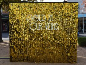 Shimmer Wall - Gold in our Veins