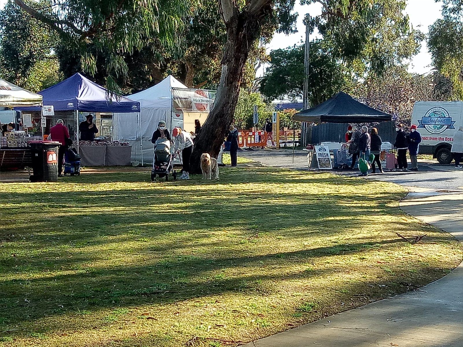 Market goers at the Dingley Village Farmers' Market