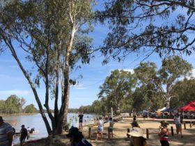 Each year 100's of participants attend the Lake Moodemere regatta