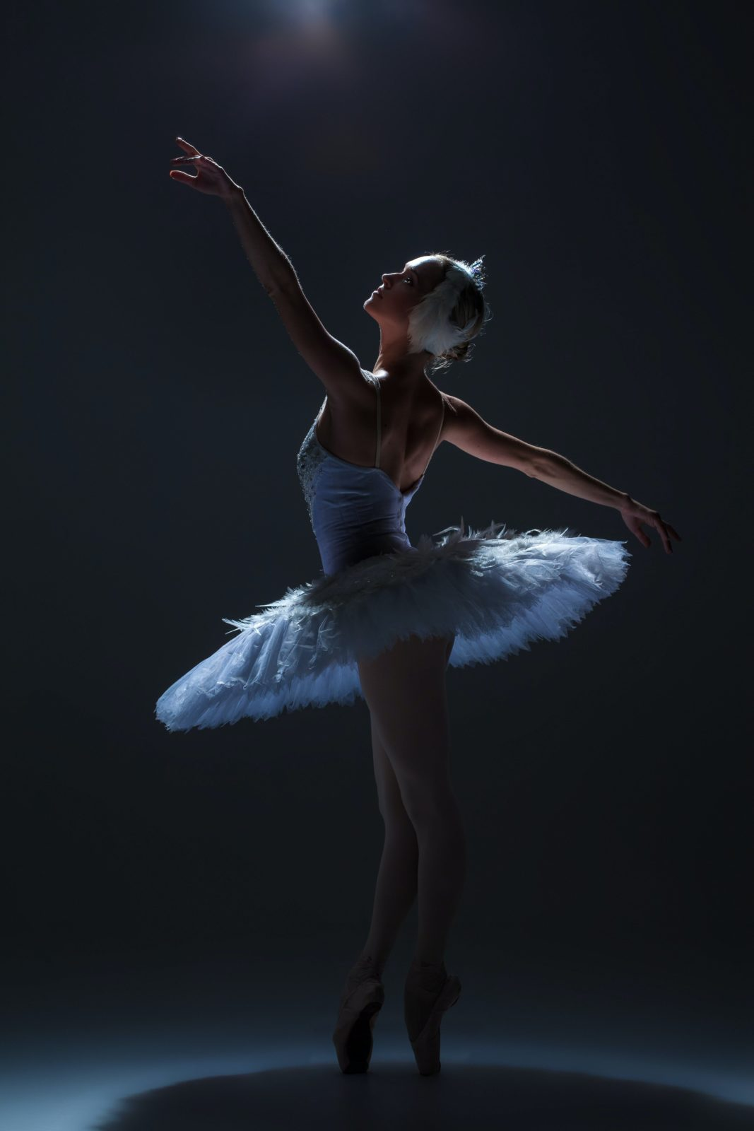 Paper Swan by PROJECTion Dance