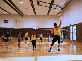 Social Volleyball League