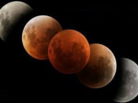 5 Moons