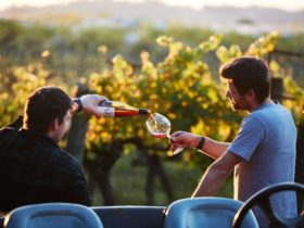 Sunset at Yarra Valley's Seville Estate Wine Down chef Soren pours winemaker Dylan a glass of pinot