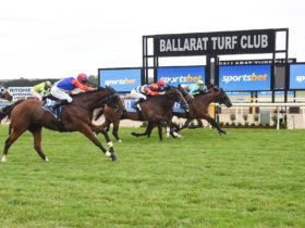 Horses crossing the line in the Sportsbet Ballarat Cup