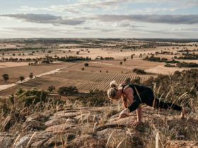 Experience yoga amongst the vines at Rutherglen Estates and Tuileries