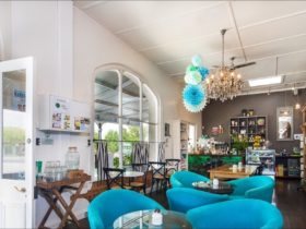 Wide angle of cafe, with mismatched tables and blue chairs and a wall of cubbyhole shelves