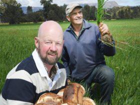 Baker Anthony Kumnick and biodynamic wheat farmer Peter Jackman