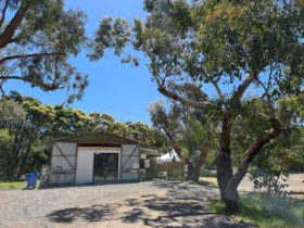 Exterior image of a shed bakery situated among large gum trees on a sunny day