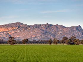 Mount Stapylton Range Laharum