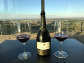 Take in Heathcote wine region with beautifl Sparkling Shiraz.