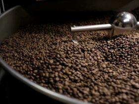 Coffee bean roasting process