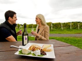 Purple Hen Winery