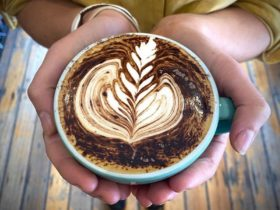hands holding blue cup of coffee with fern art in milk