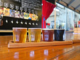Enjoy a tasting paddle: choose from 10 beers