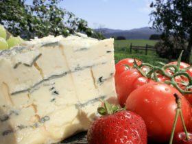 Tarago River Cheese Company