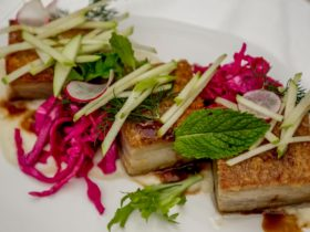 Slow Cooked Pork, Apple, Cabbage and Raddish Salad