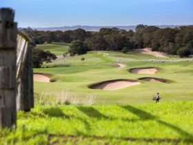 A woman plays golf on the Moonah Links Open Golf Course