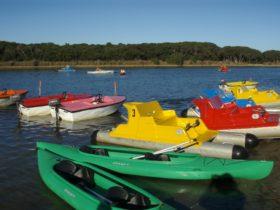Anglesea Paddleboats & Canoe Hire