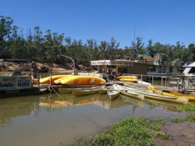Echuca Boat and Canoe Hire Dock at Vic Park Boat Ramp