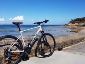 Bike Bellarine Bike Hire and Tours