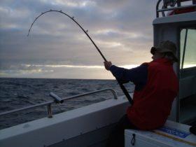 farout fishing