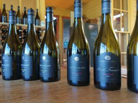 French Island Vineyards produces some fine wines and we visit there often